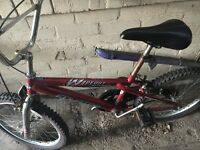 Two bike for sell