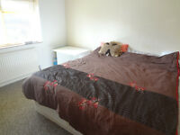 Double room in Woodingdean