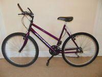 "Raleigh Max 20"" Mountain Bike"