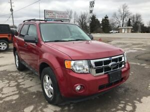 2010 Ford Escape XLT 4WD - Certified - ON SALE!!!