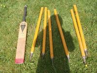 cricket bat and stumps