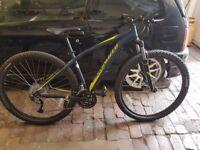 2017 Specialized Rockhopper hardtail mountain bike (Medium size frame)