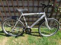 mens probike with new d-lock ready to ride can deliver