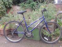 Free Spirit TULSA Mountain Bike
