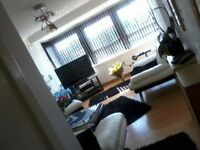 Room for rent at stenhouse drive