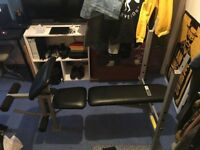 Pro Fitness Weight Bench-Very Good Condition (Very Keen to get rid of)