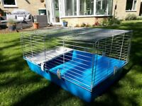 Indoor Guinea Pig Hutch