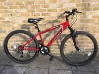 NEW bike for adult