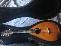 High quality Mandolin by Marque