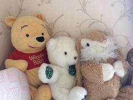 Cuddly teddies