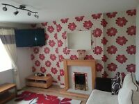 Newly Renovated Fully Furnished 1 Bedroom Flat to Rent