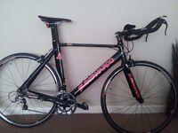 Quintanaroo Kilo Time trial/Tri/Road bike
