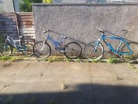 3 quality bikes for sale