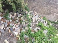 Small natural stones