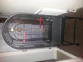 parrot cage for sale