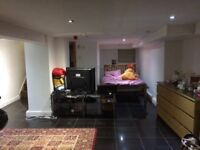 Large basement room in shared house