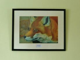 Red Alert Dog Fox Animal Print Framed Picture from a Gouache Painting Black Frame Cream Mount