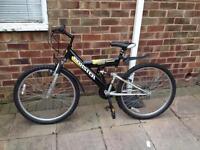 Boxster Mountain Bike