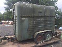 Horse box / livestock trailer / trailer