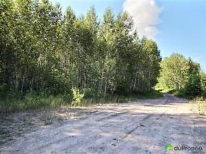 48 000$ - Terre à bois à vendre à Ferland-Et-Boilleau