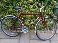 Men's hybrid bike, SARACEN,