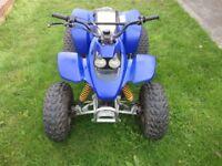 ram 100cc quad