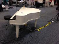 Portable Grand Piano Shell
