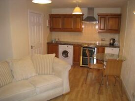 1 BEDROOM FULLY FURNISHED COTTAGE IN TAIN FOR RENT