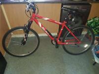 Red mountain bike