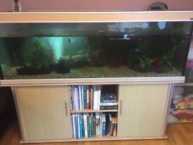 Aqua One 6ft, 600litre Aquarium, Huge Fish Tank with accessories