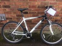 Mountain bike Ammaco ethos
