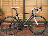 FOCUS Cayo 105 LTD Triple CARBON Road Bike. 54cm. Shimano 105. 30 speed. 8,2kg. Very good condition