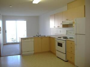 1 Bedroom with in Suite Laundry in Wetaskiwin - Available Jan