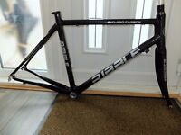 RIBBLE PRO EVO CARBON FRAMESET Medium - not used a great deal so in great condition