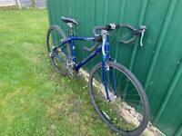 Dawes Mans bike