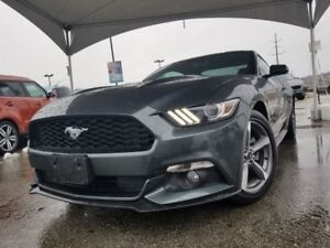 2015 Ford Mustang -