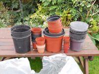 Plant pots of various sizes