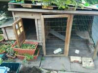 Chicken Coop/Rabbit Hutch