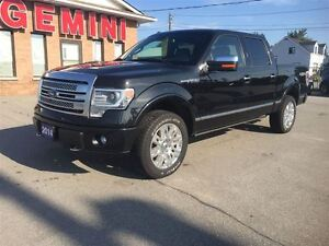 2014 Ford F-150 Platinum Navi Roof Power Boards