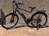 Electric Bike – Raleigh Array e bike
