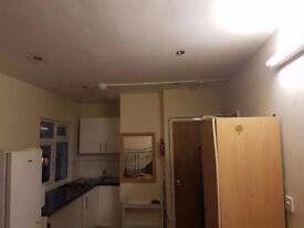 Studio room - Kitchen and Shower room