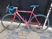 Peugeot Performance Road Bike (54cm)