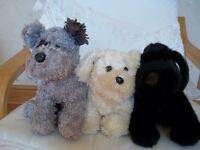 Three toy puppies