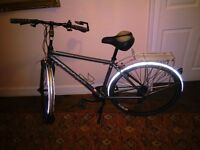 Ridgeback bike only ridden once - £290 or nearest offer (was £700 new) Charity sale for rescue dogs!