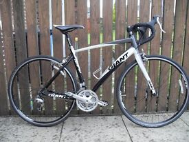 2012 GIANT RAPID RACER - Medium Frame - Would Suit Someone 5 Feet 8 Inches
