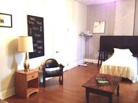 Spacious Furnished Room Downtown