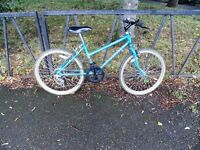"Small Ladies RALEIGH Mountain Bike For Sale. Fully Serviced & Ready To Ride. 24"" Wheels. 15"" Frame"
