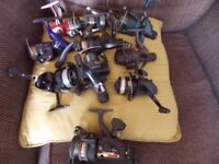 Fishing reels £5 each come fill your tackle box up
