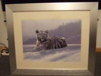 Large White Tiger Wall Picture