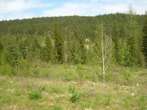 Shuswap Lake Building Lot in Blind Bay Edmonton Edmonton Area image 1